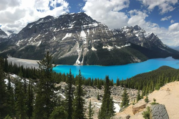 Banff Lake Peyto