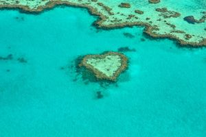 Great Barrier Reef hart