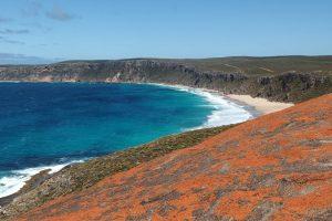 Kangaroo Island strand