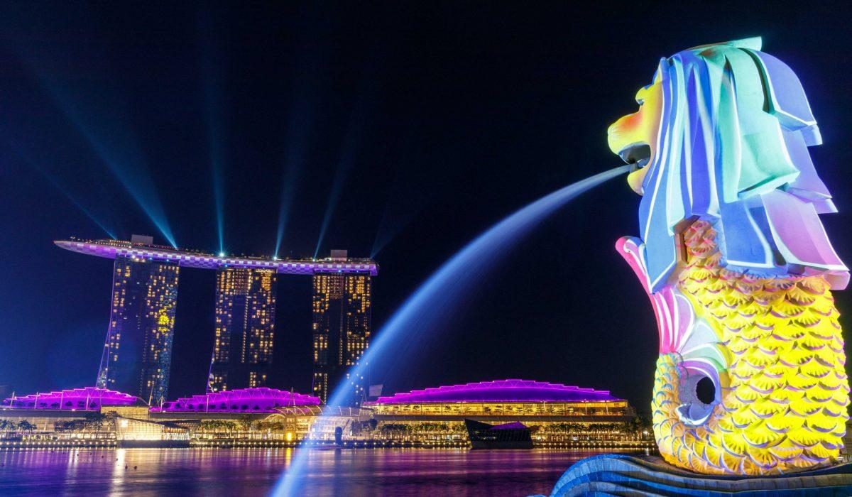 Singapore Melion